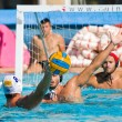 Water polo — Stock Photo #23400096