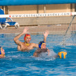 Water polo — Stock Photo #23400960