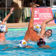 Water polo - Stock Photo