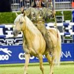Horse show — Stock Photo #23418656