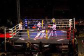 MMA combat — Stock Photo