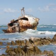 Stock Photo: Shipwreck in Cape Agulhas