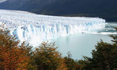 Perito Moreno — Photo
