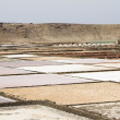 Salinas de Janubio - Stock Photo