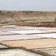 Royalty-Free Stock Photo: Salinas de Janubio