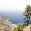 El Hierro - Stock Photo