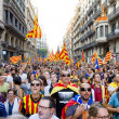 Stock Photo: Political rally in Barcelona