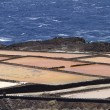 Salt pans — Stock Photo