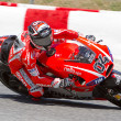 Andrea Dovizioso — Stock Photo
