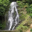 Stock Photo: Waterfall in Sao Miguel