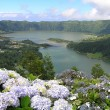 Stock Photo: Lagoa Sete Cidades