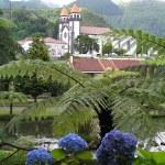 Garden in Sao Miguel — Stock Photo