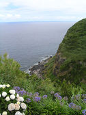 圣米格尔岛 — 图库照片