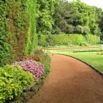 Garden — Stock Photo #27450053