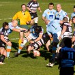 Rugby match USAP - Brive — Stock Photo