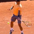 Stock Photo: RafNadal