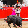 Stock Photo: Bullfight in Barcelona