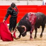 Постер, плакат: Morante bullfighting in Barcelona
