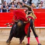 Jose Tomas bullfighting in Barcelona — Stock Photo #30589541