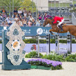 CSIO Horse Jumping Furusiyya Nations Cup — Stock Photo