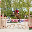 Stock Photo: CSIO Horse Jumping FurusiyyNations Cup