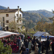Fir tree fair in Espinelves, Spain — Foto Stock