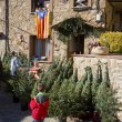 Fir tree fair in Espinelves, Spain — ストック写真