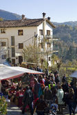 Fir tree fair in Espinelves, Spain — Stock Photo