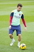 Fabregas at FC Barcelona training session — Stock Photo