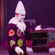 Stock Photo: Clown at circus spectacle