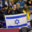 Stock Photo: Maccabi Tel Aviv supporter