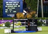 Лошади прыгать - Дэвид Макферсон — Стоковое фото