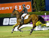 Horse Jumping - Eric Lamaze — Stock Photo