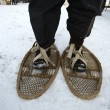 Snowshoes — Stock Photo #23536729