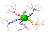 Apple mind map — Stock Vector