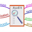 Stock Vector: Audit mind map
