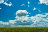 Cielo y las nubes — Foto de Stock