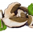 Dried porcini mushrooms — Stock Photo #43064579