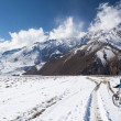 Girl on bike rides in the snow in the high mountains of the Himalayas - Stock Photo
