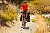 Mountain cyclist — Stock Photo