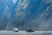 фьорды из новой зеландии — Стоковое фото