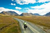 A mountain biker — Stock Photo