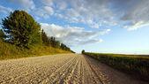 Август пейзаж с дороги — Стоковое фото