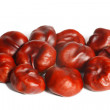 Many chestnuts on a white background — Stock Photo