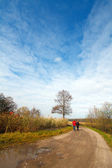 Autumn landscape with a road and tree — Foto de Stock