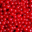 Many red currants as texture — Stockfoto #30395227