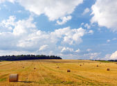 August landscape with a haystacks on the field — Stock Photo