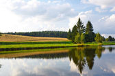 Paisaje de verano con un río y árboles en la costa — Foto de Stock