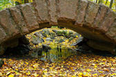 Bridge and color leaves in Autumn — Stock Photo