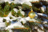 Yellow ball on the Christmas tree with snow — ストック写真